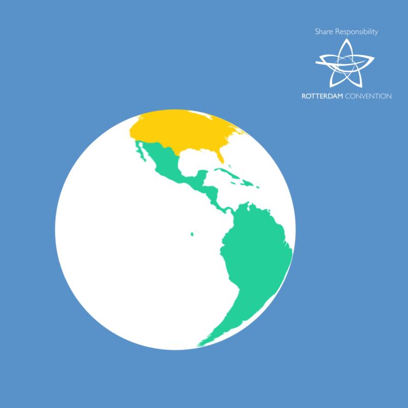 Web App per FAO